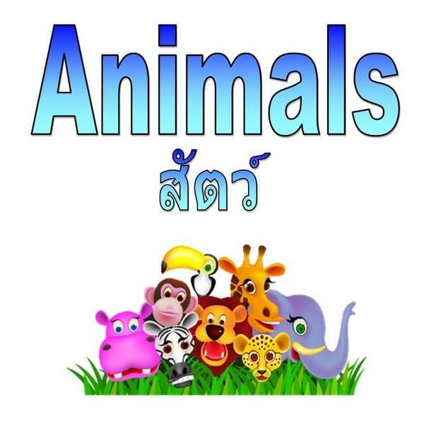 Animals สัตว์