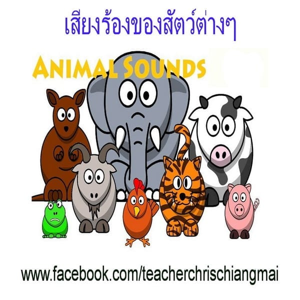 Animal sounds เสียงสัตว์