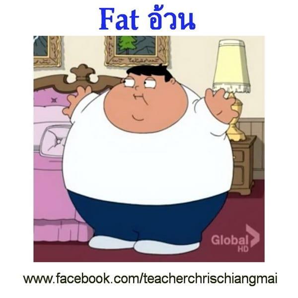 Fat อ้วน