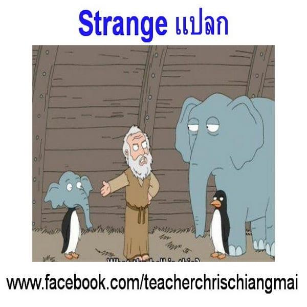 Strange แปลก