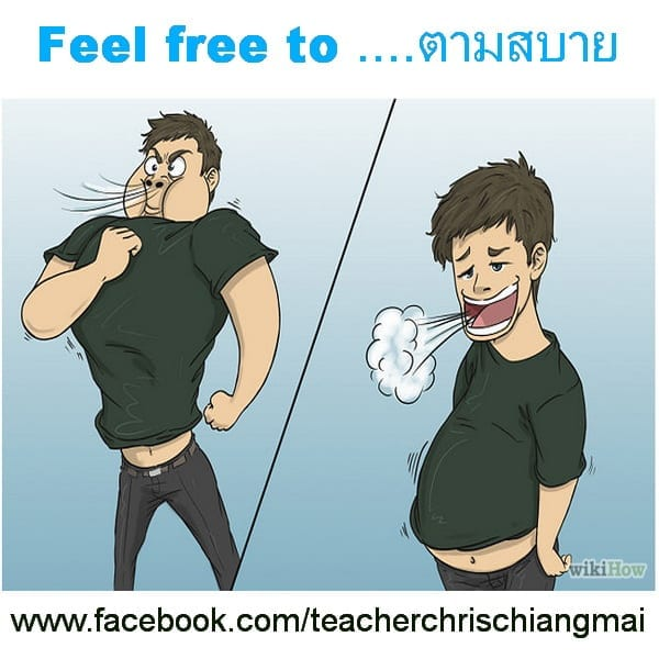 Feel free to ตามสบาย