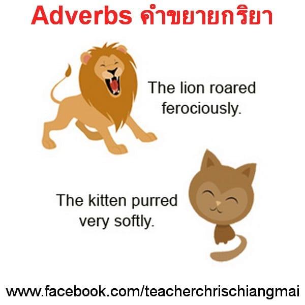 Adverbs คำขยายกริยา