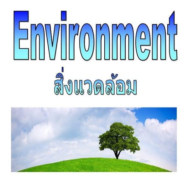 Environment สิ่งแวดล้อม